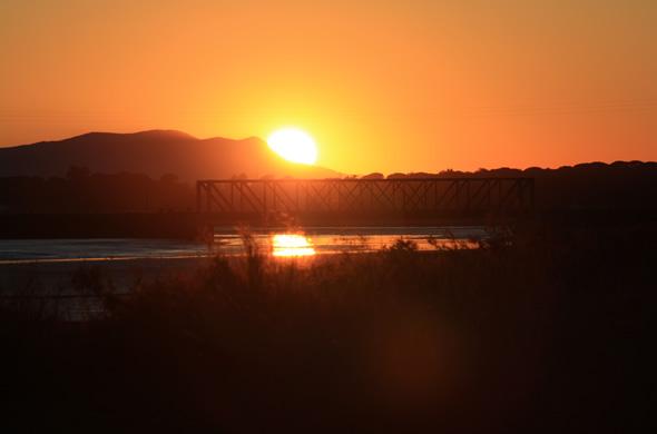 Sunset Alive